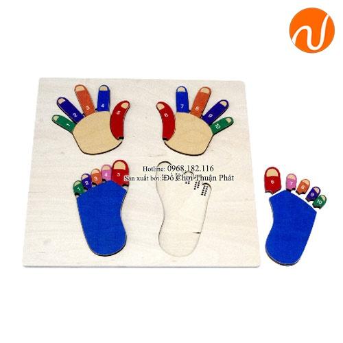 Giáo cụ Montessori bộ ghép hình và số bàn chân, bàn tay UDLQ-4505
