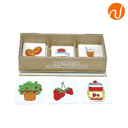 Giáo cụ Montessori sắp xếp theo thứ tự logic các thẻ ảnh theo chủ đề UDLQ-5611