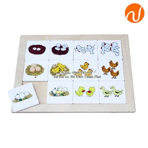 Giáo cụ Montessori sắp xếp theo trình tự xảy ra với bảng lô tô UDLQ-5607