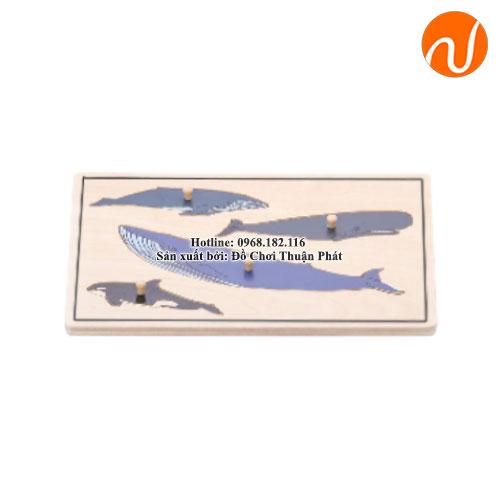 Bộ ghép hình đơn giản con cá heo GC36-002