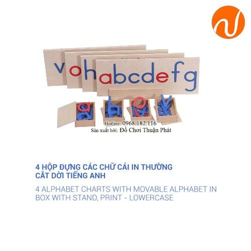 Giáo cụ 4 hộp đựng các chữ cái in thường cắt dời tiếng anh GC36-100 Học thứ tự và vị trí các chữ cái trong bảng