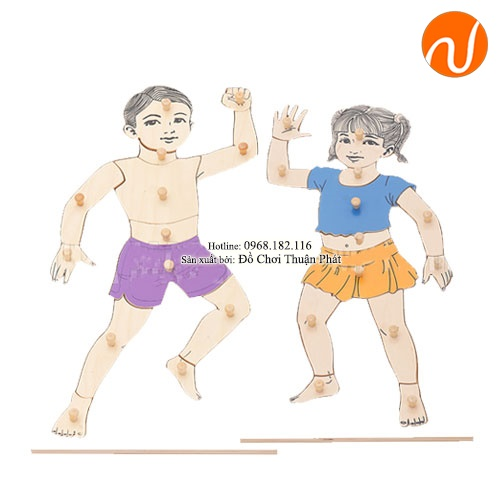 Các bộ phận cơ thể con trai và con gái phức tạp loại hà lan bằng tiếng anh GC36-278 giúp trẻ có tính tư duy lập luận