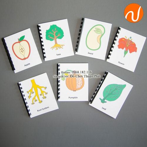 Giáo cụ cuốn sách nhỏ Cây, lá, hoa, táo - Combo GC36-323 Hướng dẫn trẻ xếp đúng theo hình cây, lá, hoa và táo.