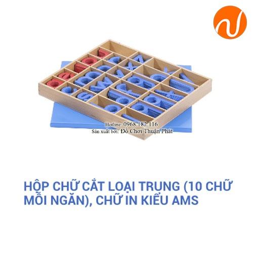 Giáo cụ hộp chữ cắt loại trung chữ in tiếng anh kiểu AMS GC36-111 giúp trẻ phát triển trí thông minh, rèn luyện các kỹ năng não thực hành