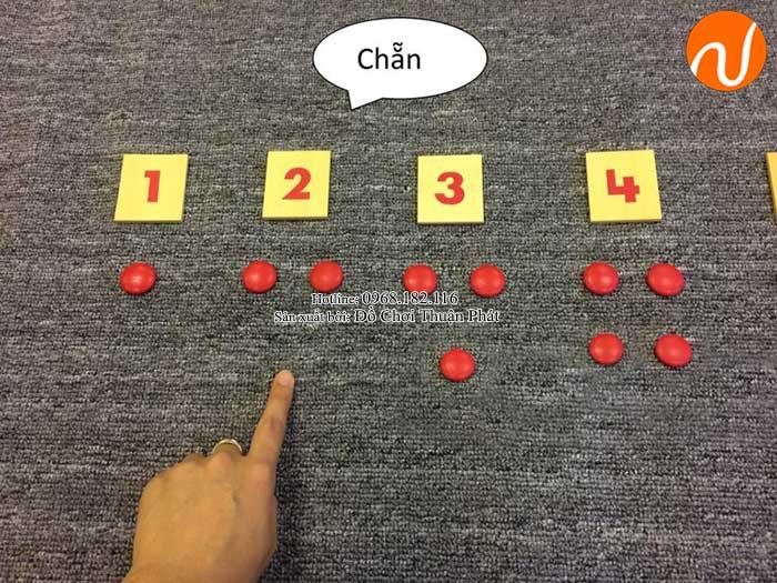 Hướng dẫn sử dụng giáo cụ Montessori thẻ số và hạt chấm đỏ-4