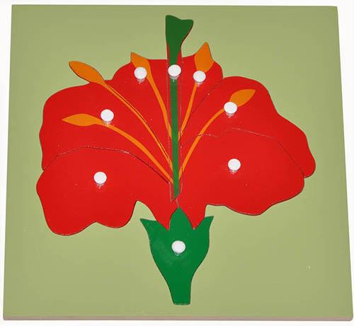 Hướng dẫn sử dụng giáo cụ Montessori bộ xếp hình bông hoa-1