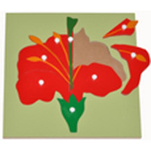 Hướng dẫn sử dụng giáo cụ Montessori bộ xếp hình bông hoa-2