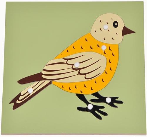 Hướng dẫn giáo cụ Montessori ghép hình con chim cho bé-1