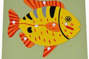 Hướng dẫn sử dụng giáo cụ Montessori bộ ghé hình cá