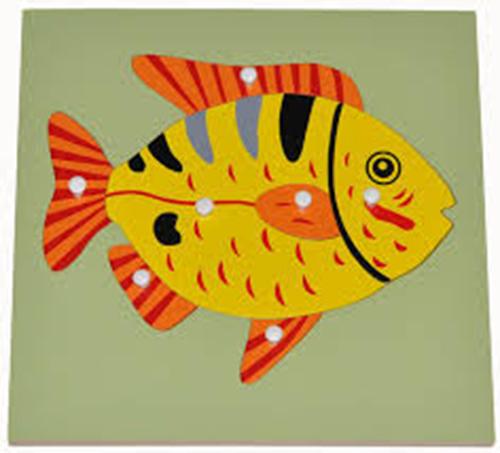 Hướng dẫn sử dụng giáo cụ Montessori bộ ghé hình cá-1